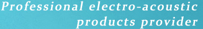Professional electro-acoustic products provider